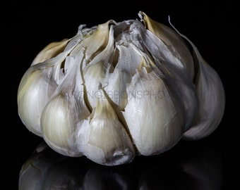 Garlic Photography, Wall Art, Home Decor, Office Decor, Still Life