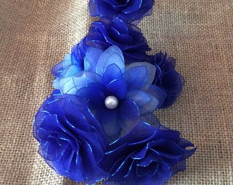 Stunning Blue Roses