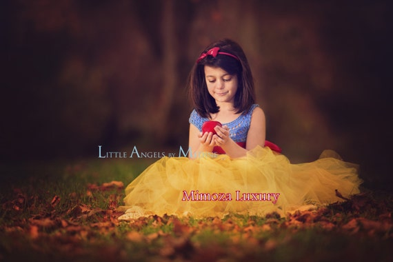 Snow White Luxury Princess dress, Flower girl dress, tutu dress, blue crochet top yellow tulle dress, knit tutu dress snow white