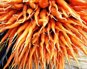 Carrot - Tendersweet (100% Heirloom/Non-Hybrid/Non-GMO)