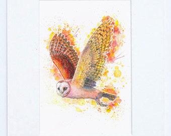 "Beautiful Barn Owl Fine Art Bird Print 8"" x 10"""