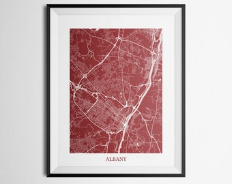 Albany, New York Abstract Street Map Print