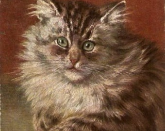 1907 M Stocks Tabby Kitten/Cat Postcard