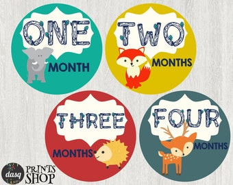 INSTANT DOWNLOAD Baby Month Stickers, Baby Boy Month Stickers, Monthly Photo Stickers,  Monthly Baby Stickers Woodland