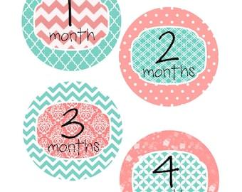 Monthly Stickers, Milestone Stickers, Baby Month Stickers, , Monthly Baby Sticker, Baby Shower Gifts, Baby Month Sticker Girl, G10