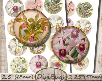 Vintage Orchid Illustrations, Digital Collage Sheet, 2.5 inch, 2.25 inch Circles, Round Orchid Images, Printable Sheet, Instant Download, b7
