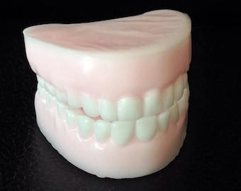 Chompers Soap