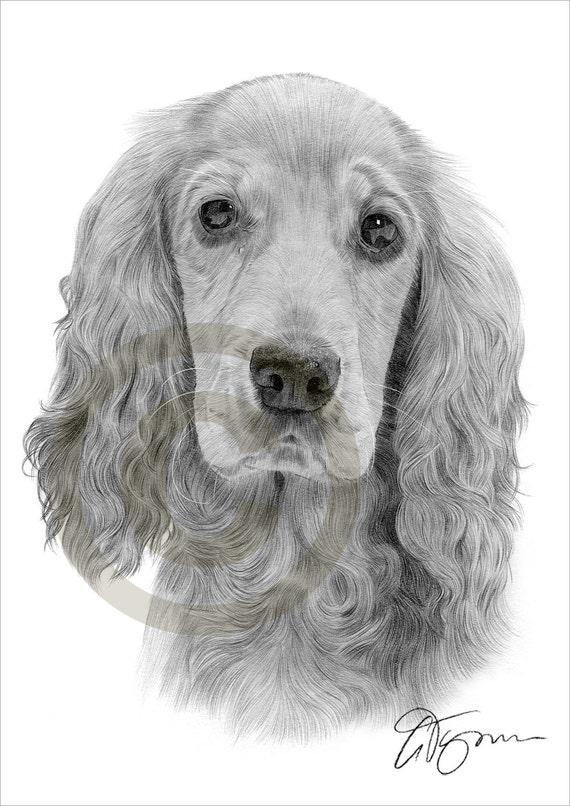 Crayon de cocker spaniel chien dessin imprimer oeuvre format - Dessin de cocker ...