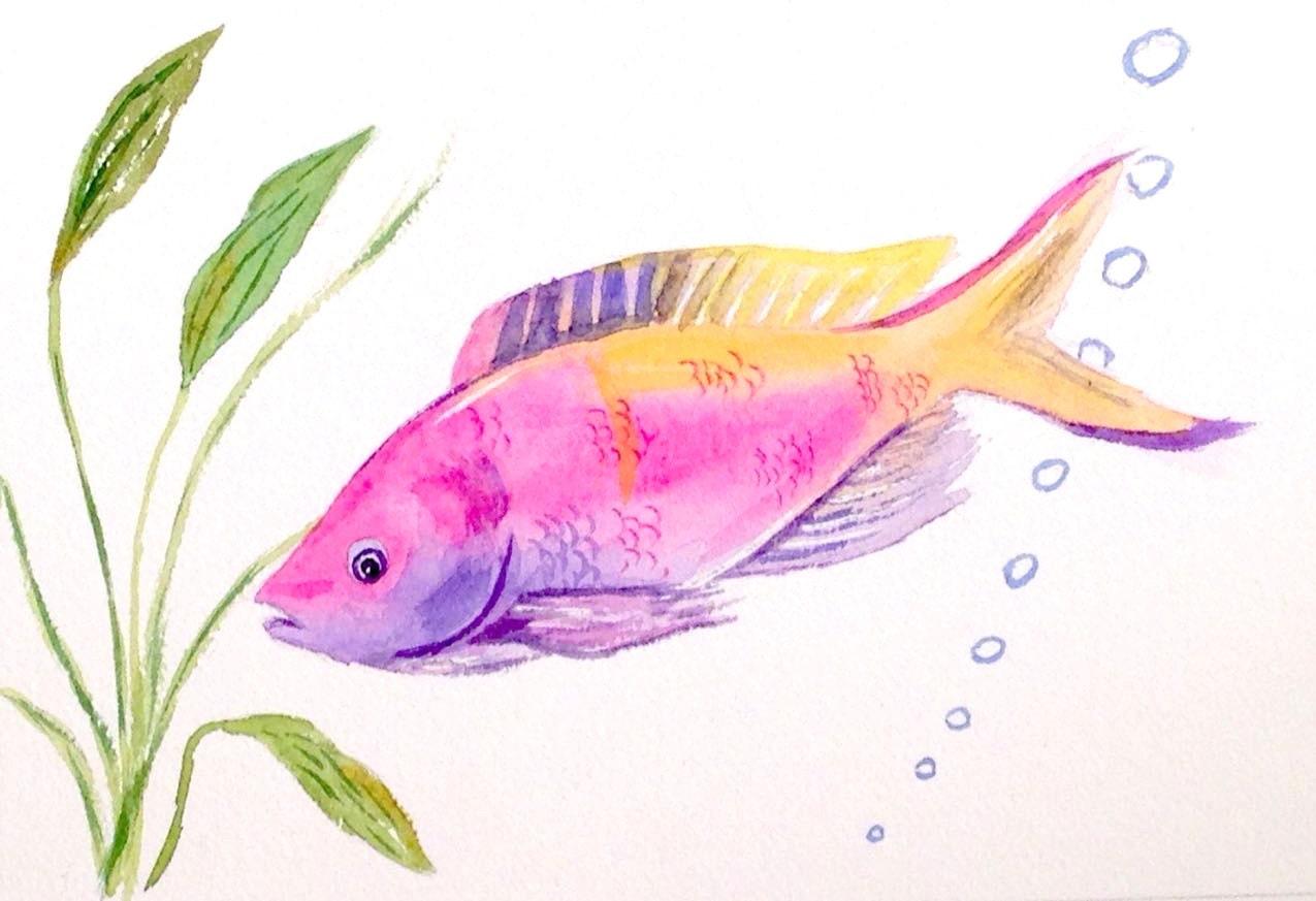 Original tropical fish watercolor fish art watercolor fish for Tropical fish painting