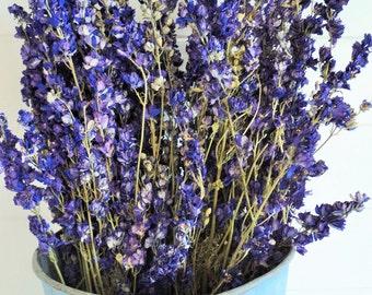 DRIED LARKSPUR, 2 Bundles, Real Dried Flowers, Dried Flower Bouquet, Blue Larkspur, Shabby Chic Wedding, Pink Flowers, floral crafts