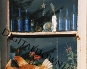 Irish cottage photography -  glass bottles and chickens  !!
