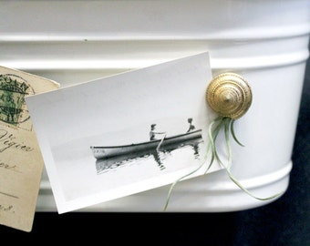 golden magnet friend //  air plant tillandsia // by robincharlotte