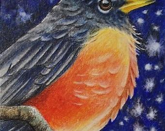 Winter Robin Bird Art by Melody Lea Lamb ACEO Print #48