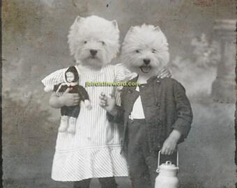 West Highland Terrier, Westie, Highland Terrier, Terrier, Westie Art, Westie Print, Westie Dog, Terrier Dog, Highland Dog, Terrier Print