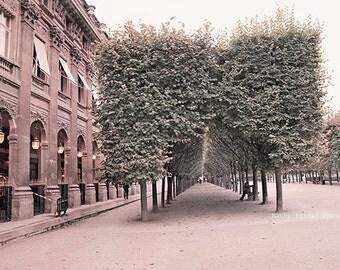 Paris Photography, Palais Royal Gardens, Autumn In Paris, Paris Romantic Gardens, Paris Architecture, Paris Wall Art Decor, Paris Fine Art
