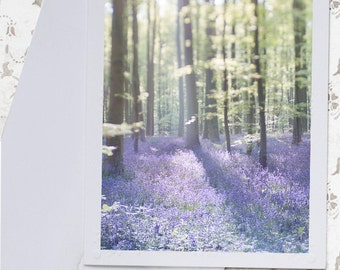 Bluebell Wood Photo Notecard - Nature Photography Travel Photo Note Card, Greeting Card, Stationery, Blank Notecard