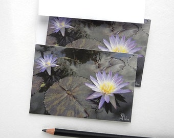 flower note cards, photograph cards set, purple water lily, water lilies stationery, 5 botanical cards and envelopes