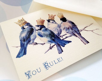 Funny Card, Birthday Card,  Congratulations Card, Thank You Card, Set of 6
