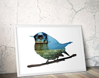 bird silhouette in turquoise, tomtit digital silhouette art, 11x14 poster, minimal animal art, industrial decor, aqua blue, cyan, nautical