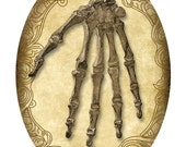 5x7 Inch Oval - Victorian Goth Steampunk Antique Anatomy Skeleton Hand - Single Digital Image, Instant Download, Printable, Digital Download