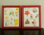 Framed Vintage Floral Prints / Botanical Illustrations in Red and Yellow / Pair of Red Framed Flower Botanical Photos / Time Life Photos