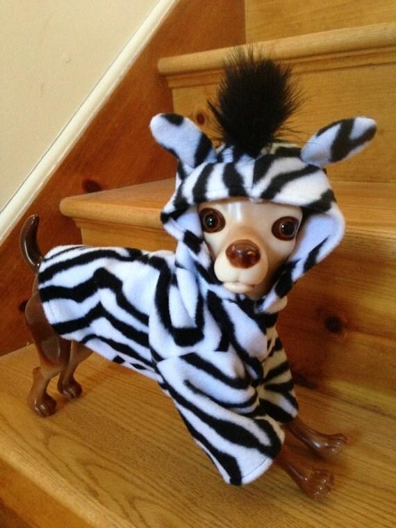 Zebra costume by FiercePetFashion