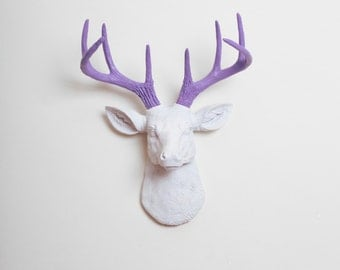Faux Taxidermy - The MINI Wyatt - White W/ Lavender Antlers Resin Deer Head- Stag Resin White Faux Taxidermy