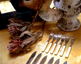 VINTAGE FISH FLATWARE Serving ware with celluloid-ivory style handles and silver plate blades, six forks and six knives