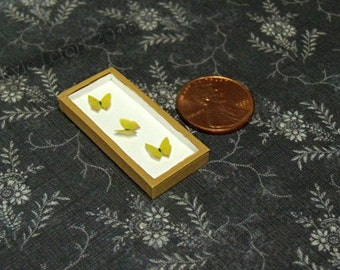 Dollhouse Miniature Riker Mount - Tailed Sulphur Yellow Butterfly Trio - One Inch Scale Butterfly Display - Wall Art
