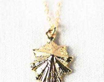 Kainui necklace - gold opihi shell necklace, delicate shell necklace, hawaii necklace, limpet shell necklace, beach jewelry, maui, hawaii