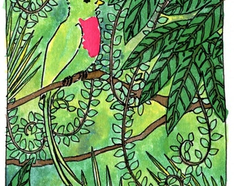 Quetzal original illustration giclee print