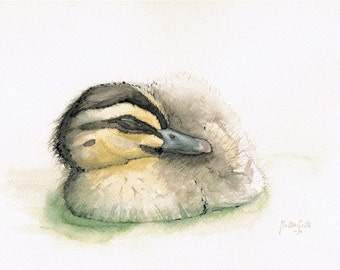Sleeping Duckling Original Ink and Watercolour Painting