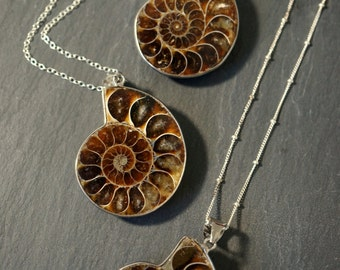 Ammonite Fossil ⊿ Ammonite  Necklace ⊿ Ammonite Pendant ⊿ Prehistoric Relic ⊿ Genuine Fossil ⊿ Shell Pendant ⊿ Ammonite Pendant Necklace