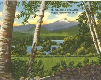 Vintage New Hampshire Postcard Mt. Chocorua and Lake White Mountains Birch Trees (unused)