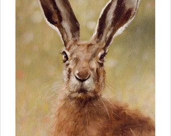 HARE Wildlife Portrait by award winning artist John Silver. Personally signed A4 or A3 size Print. HA006SP