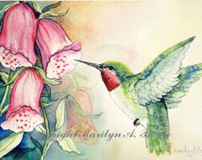 ACEO LIMITED EDITION print; ruby throat hummingbird, foxgloves, flowers, garden, nature, reproduction, wings, feathers,