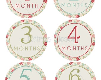 Baby Month Stickers, Baby Girl Month Stickers, Monthly Sticker Kit, Baby Month Stickers, Milestone Stickers, Vintage Floral Month Stickers