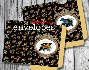 GARDEN BIRDs  -  Printable 2 Mini Envelopes Journal pocket Download Digital Collage Sheet  - Print and Cut