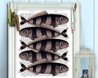 Five Striped Fish Print - Fish print, nautical print fishermans gift, fishing gift for men fathers day gift for dad cabin decor