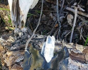 Mammalian Coxal Bone Necklace with Crystals