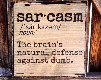 Sarcasm Dictionary Definition - Wooden Shelf Decor or Wall Hanging