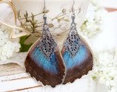 Real Morpo butterfly earrings (bottom/hind wings)/ Real Resin botanical Jewelry, gift for a woman