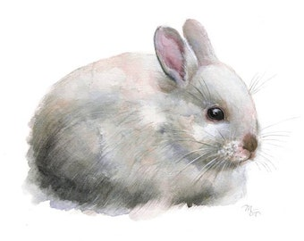 Bunny Rabbit Watercolor Painting Art Print. Nature Animal Illustration. White Rabbit