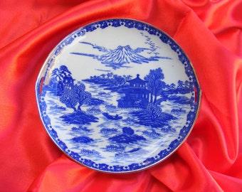 PLATE Porcelain - Collection - Decoration - Vintage - Cobalt painting