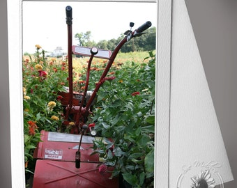 Photocard: Row Tiller in flower field