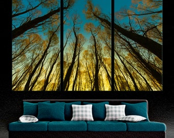 3 Panel Split, Triptych Canvas Print of Trees in forest. Nature photography for living room wall decor, interior design. Green & blue Giclee