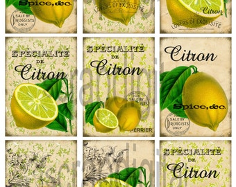 Instant download*digital sheet*old paper*scrapbooking*tags*labels*printable*lemons*08