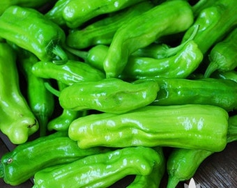 Golden Greek Pepperoncini Pepper Heirloom Seeds - Non-GMO, Open Pollinated, Untreated