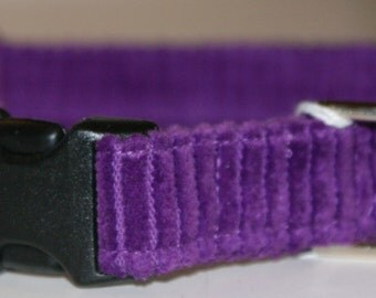 Purple Corduroy Medium Dog Collar