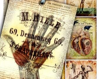 ANATOMY printable skull bones antique book atc aceo size  instant download - Digital collage sheet background vintage - ac108